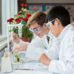 A photo taken by Lillian Spibey entitled: Cranleigh Biology Practical-6920