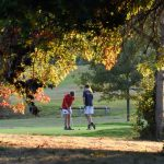 A photo taken by Martin Williamson entitled: Autumn on the golf course