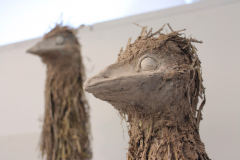 Rafe Scott, Emu Couple (detail)